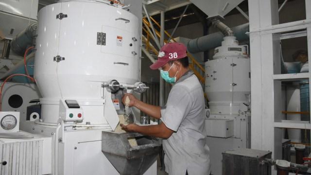 Bulog Investasi Rp 200 Miliar Bangun Pabrik Pengolahan Hasil Pertanian (82741)