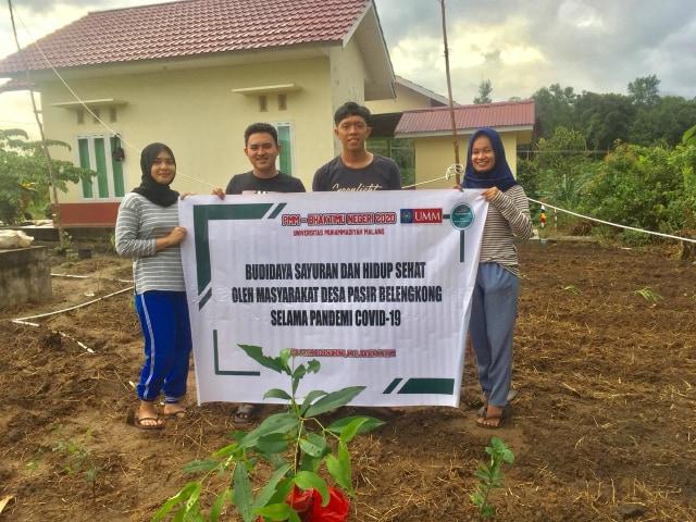 Bentuk Tanaman Obat Keluarga (TOGA) PMM UMM disambut baik warga Desa  (406655)