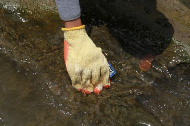 Foto: Pencemaran Mikroplastik, Sungai Brantas Kritis (291167)