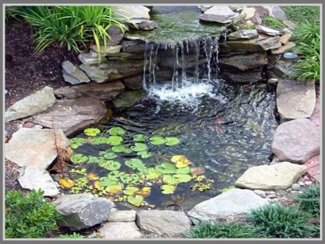 Yuk Percantik Rumahmu Dengan Diy Kolam Air Terjun Di Depan Rumah Kumparan Com