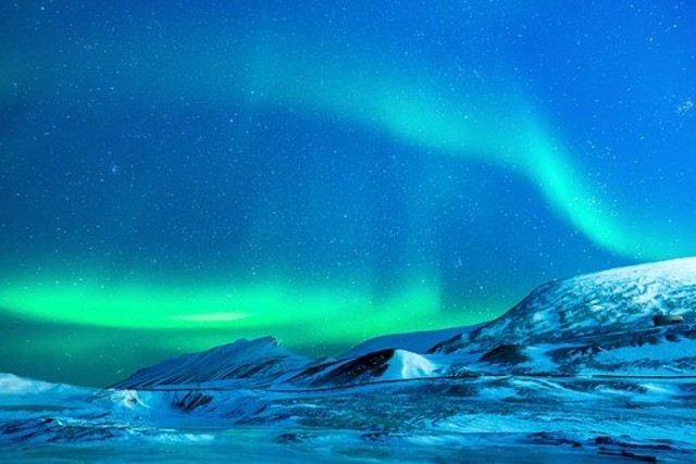 Perubahan Iklim Merombak Ulang Kehidupan Serangga di Arktik