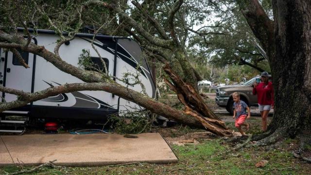 Foto: Pohon-pohon yang Tumbang Akibat Badai Sally di Amerika Serikat (300873)