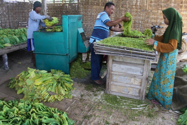 Pemerintah Diminta Perhatikan Nasib Pekerja Sebelum Naikkan Cukai Rokok di 2022 (16166)