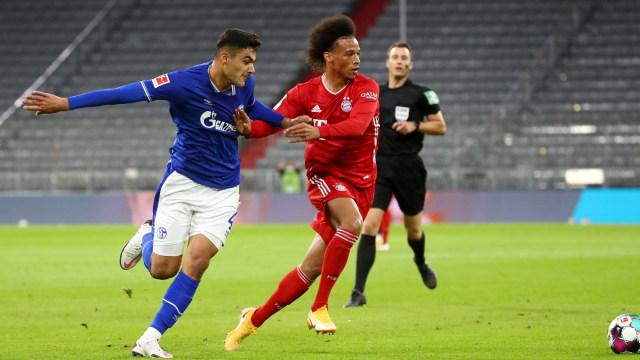 Schalke vs Hoffenheim: Prediksi Skor, Line Up, Head to Head, & Jadwal Tayang (105450)