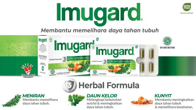 Banyak Manfaat, 3 Tanaman Herbal Indonesia Ini Efektif Jaga Daya Tahan Tubuh (4)