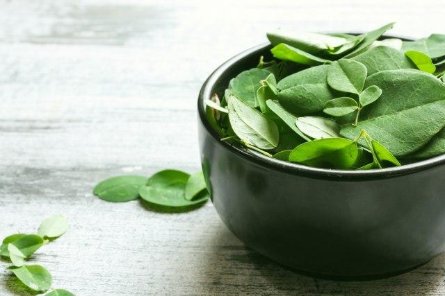 Banyak Manfaat, 3 Tanaman Herbal Indonesia Ini Efektif Jaga Daya Tahan Tubuh (2)