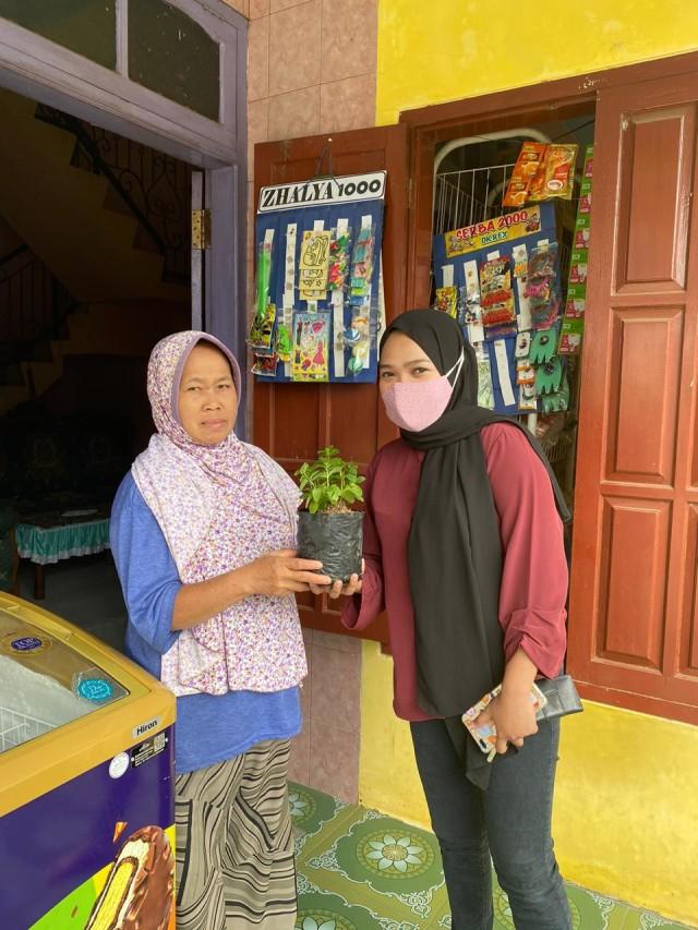 Go Green, Mahasiswa UMM Bagikan Bibit Tanaman Herbal (307299)