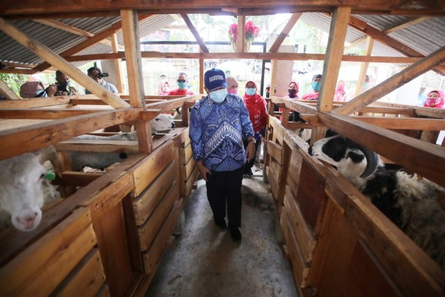 Lahan Terbatas, Pemkot Bandung Kembangkan Integrated Farming (215558)