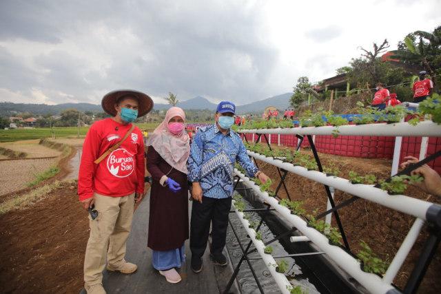 Lahan Terbatas, Pemkot Bandung Kembangkan Integrated Farming (215559)