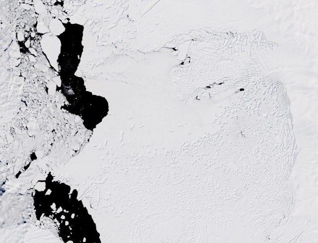 Kiamat Gletser Akan Terjadi di Antartika, Begini Dampak Buruknya (1)