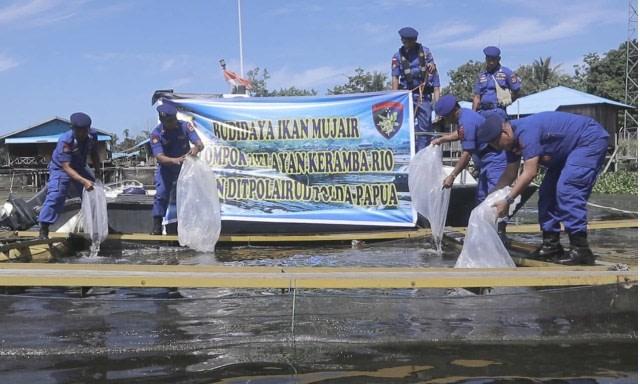 Ketika Ikan Gurami, Wader, dan Nila jadi Pemusnah Ikan Asli Danau Sentani, Papua (514348)
