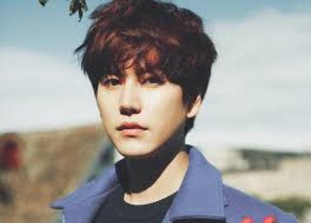 MV Korea Terbaru, Kyuhyun Super Junior di Musim Gugur (130460)