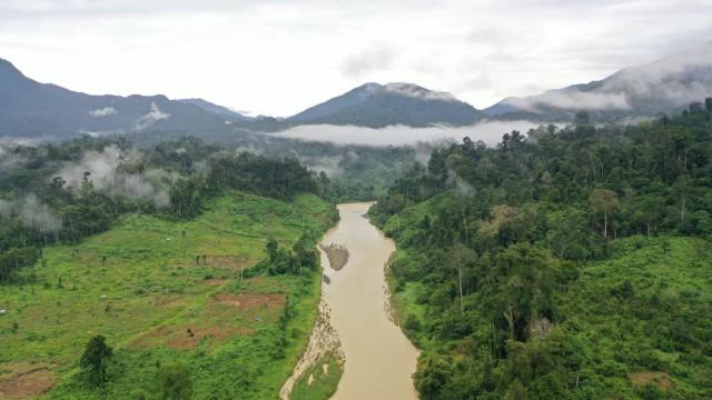 Hikayat Listrik dan Nasib Jembatan Roboh di Lembah Leuser, Aceh [2] (376578)