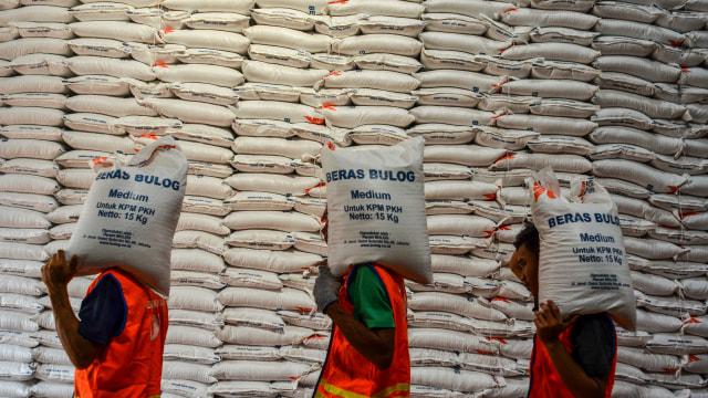 Cek Gudang Bulog di Klaten, Ganjar Kritik Mekanisme Penyerapan Gabah yang Rendah (316538)