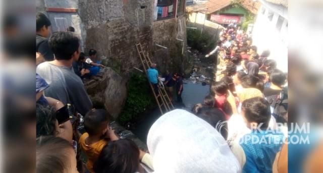 Kemunculan 2 Ular Sanca Kagetkan Warga Kota Sukabumi, di Baros dan Citamiang (82794)