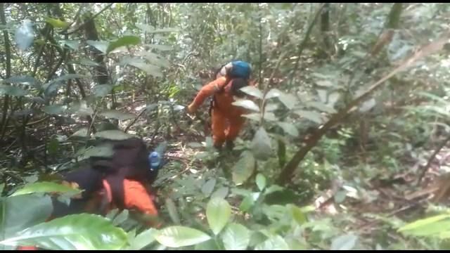 Hilang di Hutan Sumbar: Rombongan Pertama Telah Kembali, 77 Warga Masih Dicari  (152630)