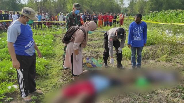 4 Orang di Bojonegoro, Meninggal Akibat Tersengat Listrik Jebakan Tikus di Sawah (119468)