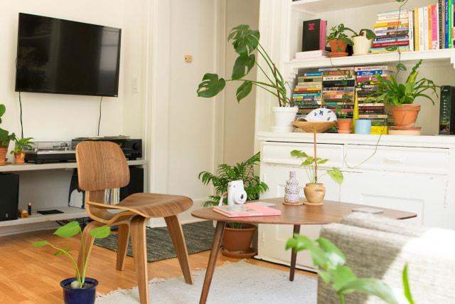 Tak Hanya Mempercantik Ruangan, Ini Manfaat Tanaman Hias Bagi Kesehatan (101839)