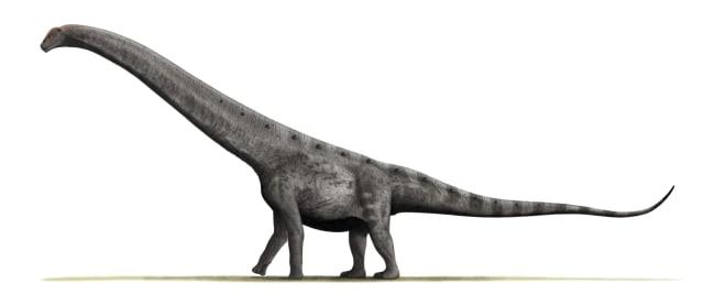 Ini 3 Dinosaurus Terbesar yang Pernah Kuasai Planet Bumi (1)