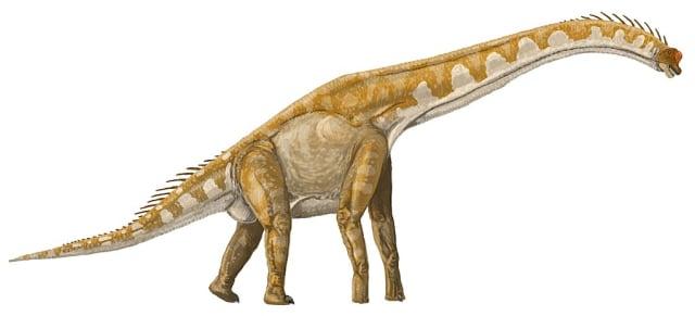Ini 3 Dinosaurus Terbesar yang Pernah Kuasai Planet Bumi (5)