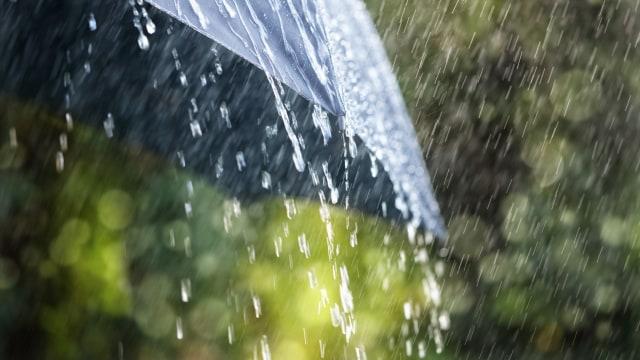 Cuaca Hari Ini: Waspadai Hujan Disertai Angin Kencang di Jakbar hingga Jaksel (1452)