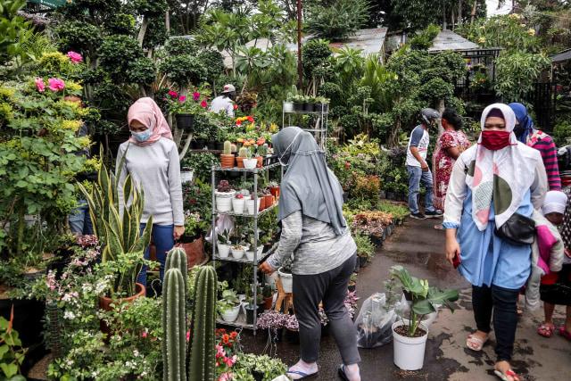 Foto: Segarnya Bisnis Bunga Hias saat Pandemi (7048)
