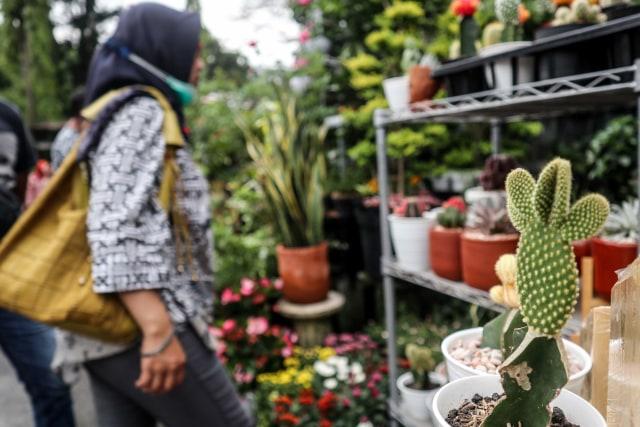 Foto: Segarnya Bisnis Bunga Hias saat Pandemi (7054)