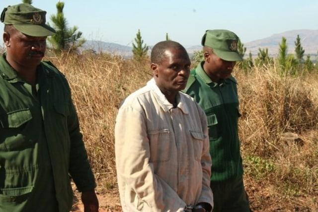David Simelane, Pembunuh Berantai yang Mengumpulkan Seluruh Mayatnya di Hutan  (76444)