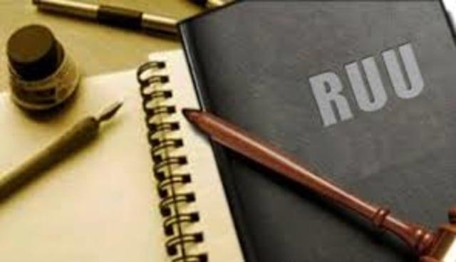 Ruu Cipta Kerja dan Lemahnya Fungsi Legislasi DPD (370066)
