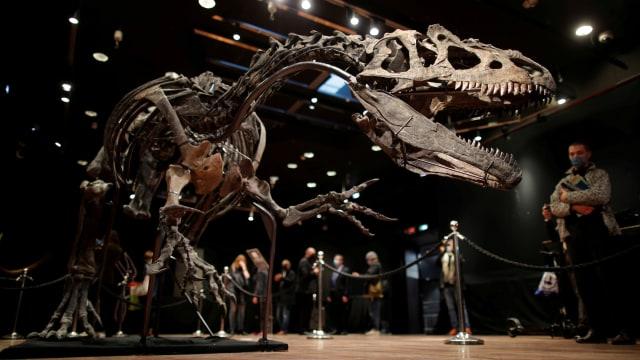 Foto: Kerangka Dinosaurus di Prancis Dijual Lebih dari Rp 51 Miliar  (265238)