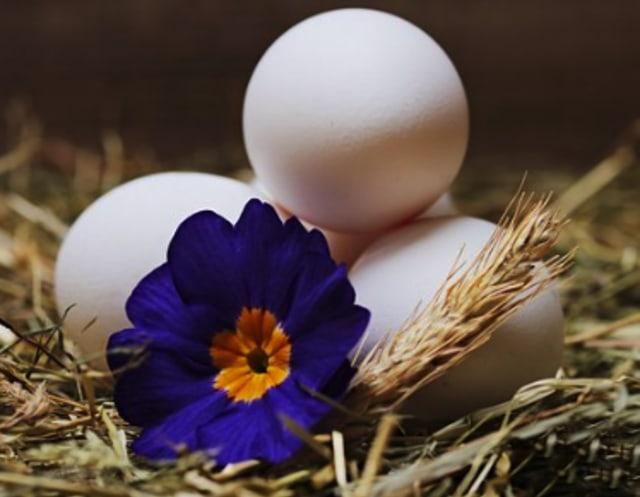 Cara Menghilangkan Jerawat Pasir Menggunakan Madu Hingga Putih Telur (86670)