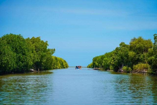 Menparekraf Siapkan Spot untuk Konten TikTok dan Instagram di Ekowisata Mangrove (2)