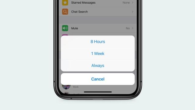 Resmi Dirilis, Begini Cara Bungkam Chat WhatsApp Selamanya (525497)