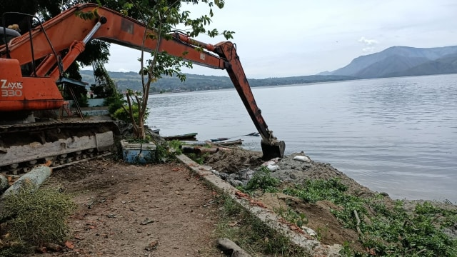 Hindari Bau Busuk, 109 Ton Ikan di Danau Toba yang Mati Mendadak Dikubur (61923)