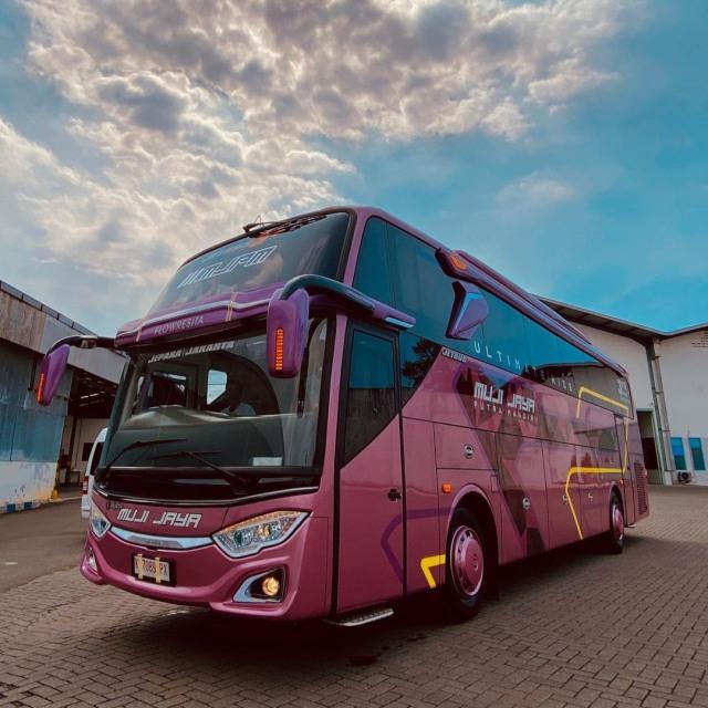 PO Muji Jaya Putra Mandiri Punya Bus Baru Bersuspensi Udara, Intip Fasilitasnya (119631)