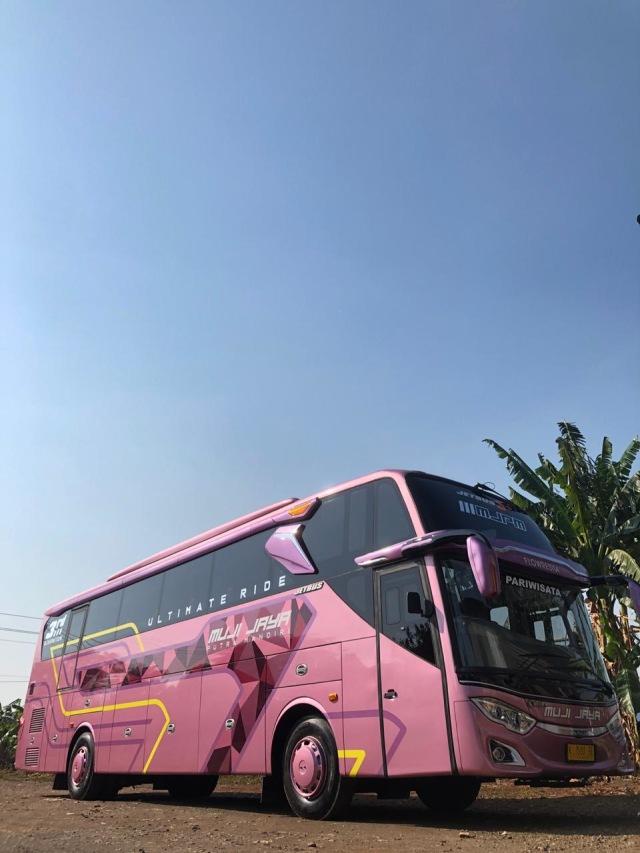 PO Muji Jaya Putra Mandiri Punya Bus Baru Bersuspensi Udara, Intip Fasilitasnya (119637)
