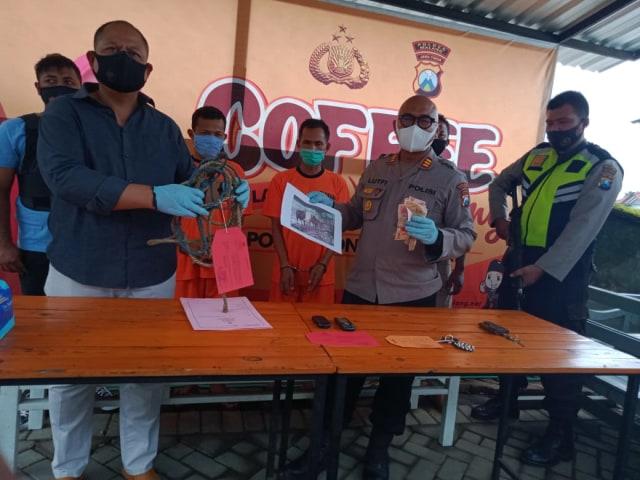 Kapolsek Poncokusumo, AKP Moh Lutfi merilis pelaku pencurian sapi pada Selasa (27/10) siang.