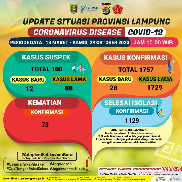 Update Corona Provinsi Lampung 29 Oktober: Tambah 28 Positif dan Tiga Meninggal (208976)