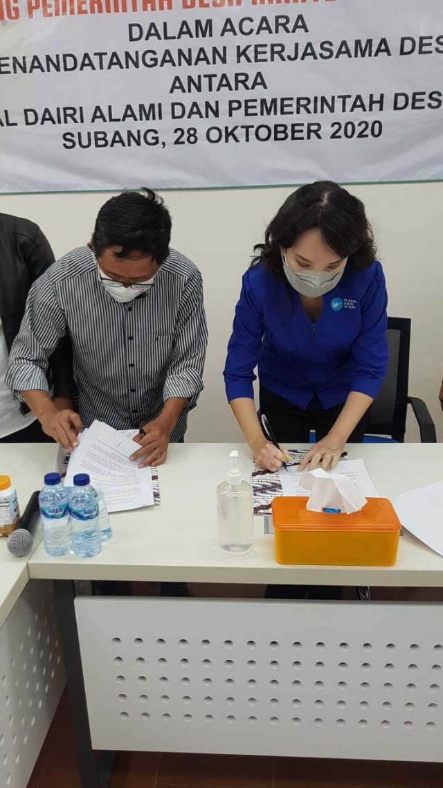Teknologi Biogas Peternakan Subang, Ubah Kotoran Sapi Jadi Sumber Energi Pabrik (116279)