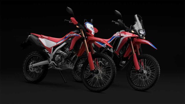 Duo Honda CRF250 Punya Tampilan Baru, Ini Bocorannya (83350)