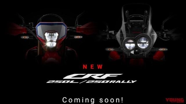 Duo Honda CRF250 Punya Tampilan Baru, Ini Bocorannya (83349)
