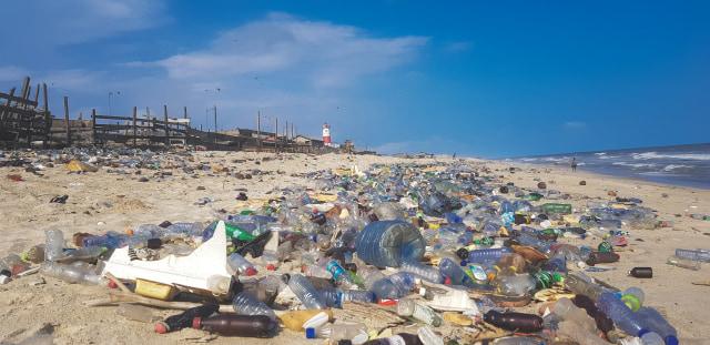 Enzim Pemakan Plastik Memberi Harapan Baru Bagi Sampah Plastik di Dunia (50617)