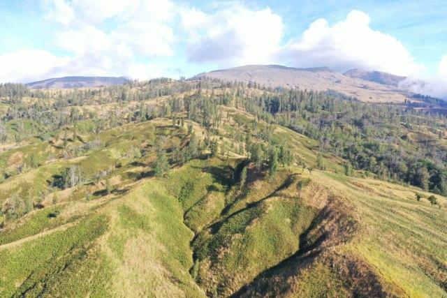 Kawinda To'i: Pesona dan Kisah Bagian Utara Jalur Pendakian Gunung Tambora (18840)