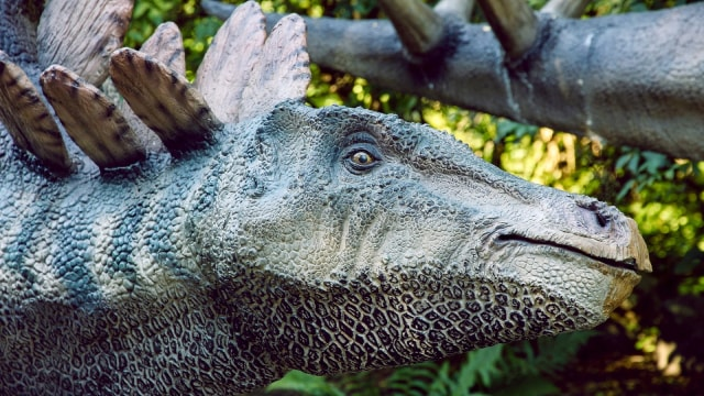 Sudah Tahukah Kamu Keunikan Otak, Bulu, dan Suara Dinosaurus? (49816)