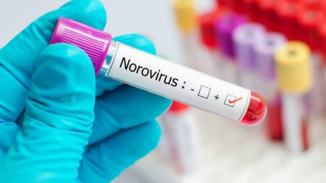 Munculnya Norovirus di Tengah Pandemi Covid-19 (137113)