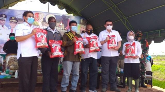 Beras Malind dari Petani Milenial Asal Merauke Papua (46018)