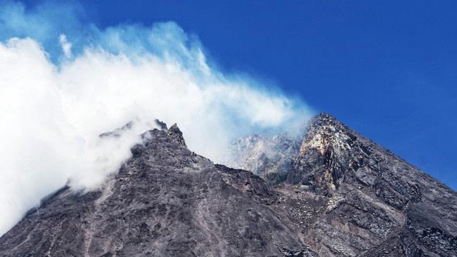 Gunung Merapi Siaga, Bagaimana Nasib Flora dan Fauna di Dalamnya? (21282)