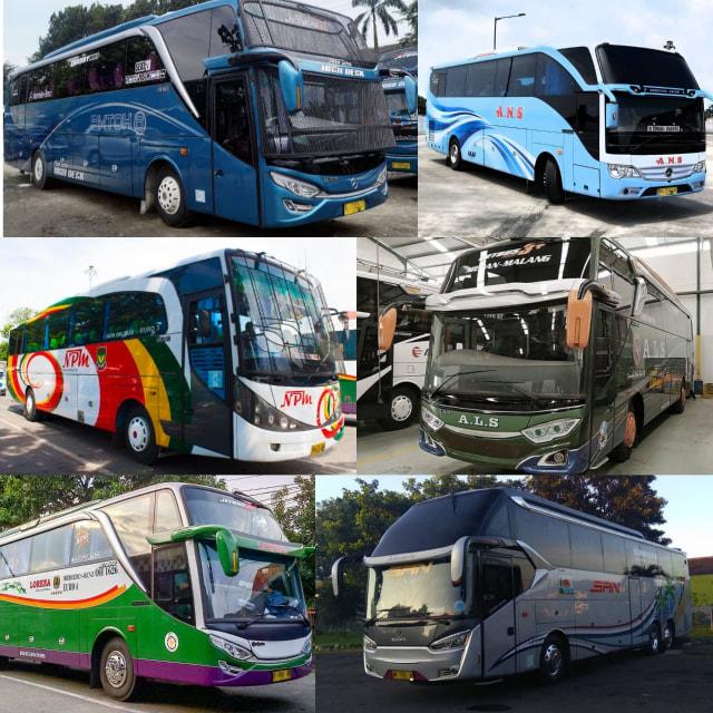 5 Fakta Unik Seputar Bus yang Ada di Indonesia  (211763)