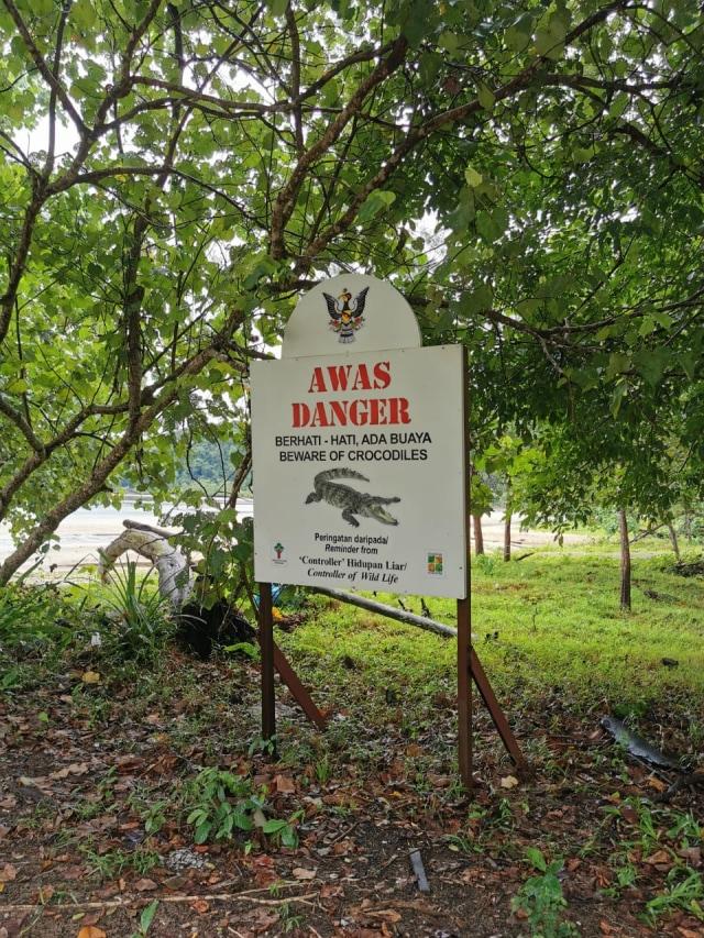 Diplomat Ladang: Menjelajahi Ladang Kelapa Sawit di Sarawak, Malaysia (118003)