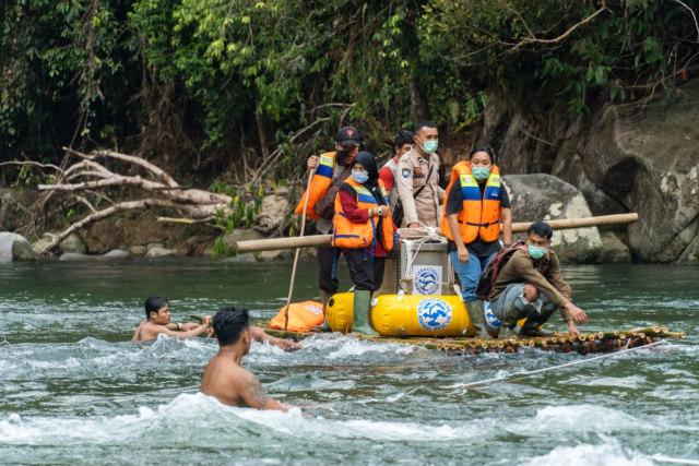 Kisah 5 Orangutan yang Kembali ke Habitatnya di Alam Liar Hutan Hujan Kalimantan (14358)